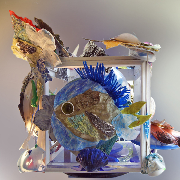Planche Eau Douce - Aquarium -