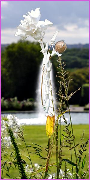 Planche Fleur de Javel  -Parmi les Fleurs