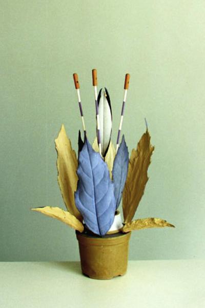 Planche Plantes Naines - Banbous -
